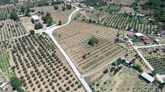 2020/06/1593155221_buca_belediyesi_tarim_(1).jpg