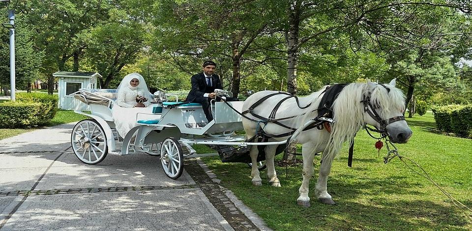Ankara Büyükşehir Belediyesi'nden evlenecek çiftlere çekim hizmeti...