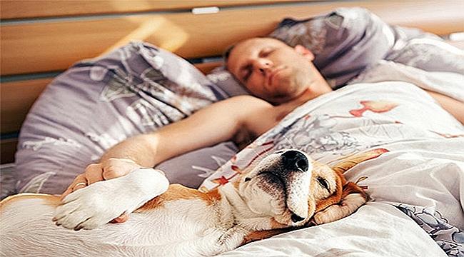 Kaliteli bir uyku için 10 altın kural!