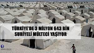 Türkiye'de 3 milyon 643 bin Suriyeli mülteci yaşıyor