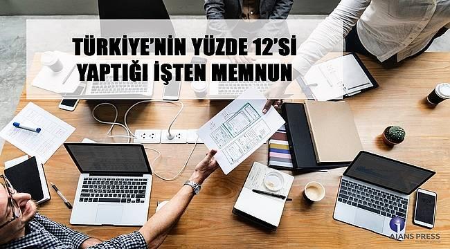 Türkiye'nin yüzde 12'si yaptığı işten memnun