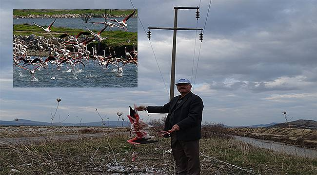İzmir Kuş Cenneti'ndeki ölümler Meclis gündeminde