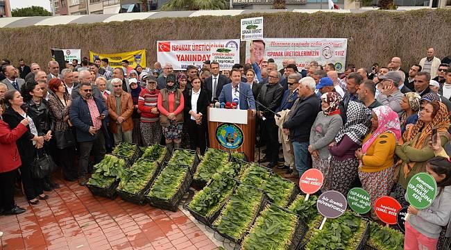 Menemen Belediyesi'nden ıspanak üreticisine destek