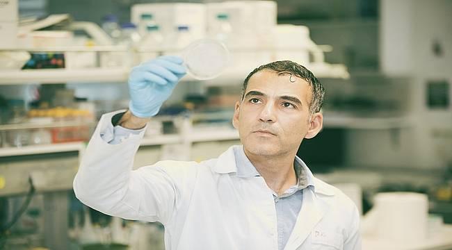 Prostat kanserini odağında yok edecek yeni ilaç