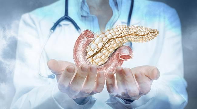 Tüm yönleriyle pankreas kanseri