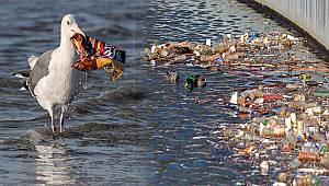 Cenap Özer: '22 Mart Dünya Su'yu İdrak Etme Günü' olmalı