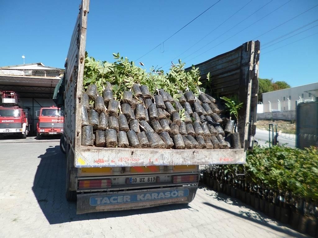 Manisa Büyükşehir'den Üreticileri Sevindirecek Haber