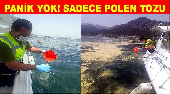 Antalya'da deniz sarıya boyandı, Büyükşehir açıkladı: Gemi atığı değil polen kümesi