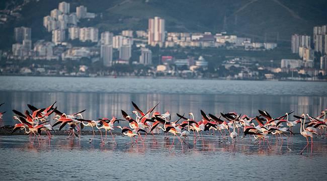 Tunç Soyer: İzmir doğal yaşamla bütünleşecek