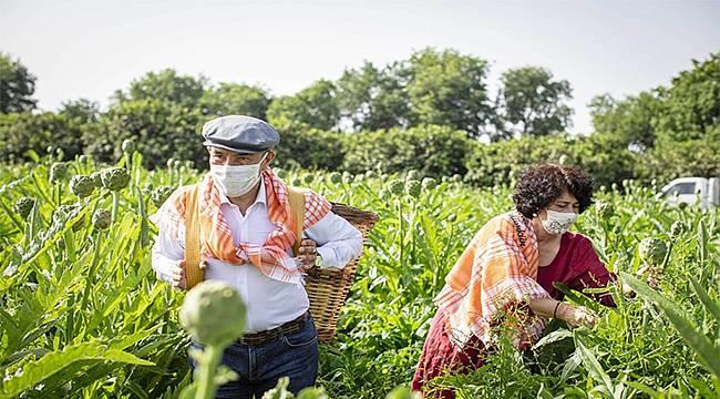 Tunç Soyer, sırtında küfeyle enginar hasadına katıldı
