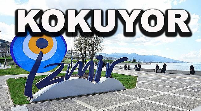 AK Partili Boztepe'den 'Koku' çıkışı
