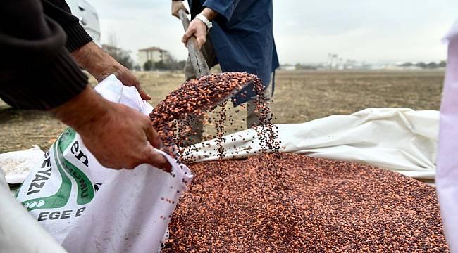 Ankara Büyükşehir Belediyesi çiftçilerin yanında: 25 ilçede tohum desteği