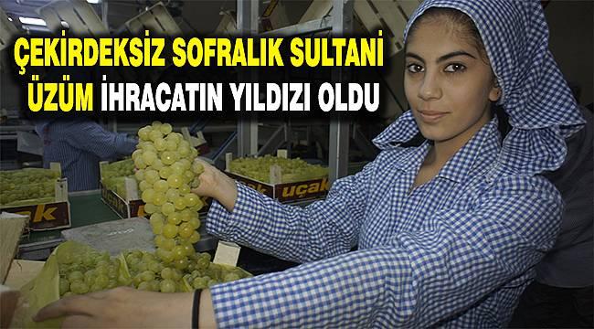 Osmanlı sultanlarının gözdesi, ihracatın yıldızı oldu