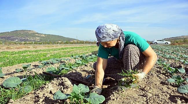 Yaşar Holding'ten tarıma tam destek