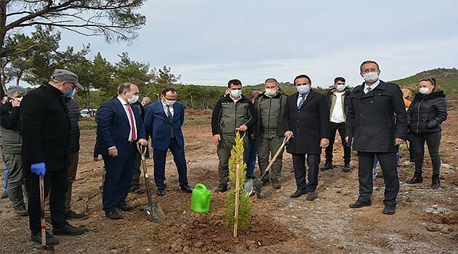 Ayvalık'ta yanan alanlarda ağaçlandırma çalışması başladı