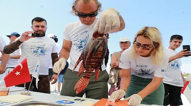 Akdeniz'de aslan balığı avı